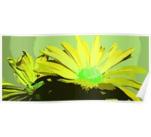 Yellow and Green Wild Flower Design Poster