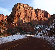 Kolob Canyons by Patricia Montgomery