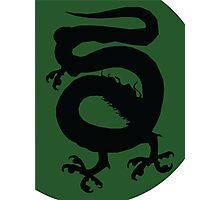 Green Dragon Photographic Print