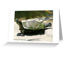 Stretch Greeting Card