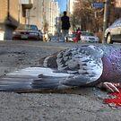 An Innocent Life by Bobby McLeod