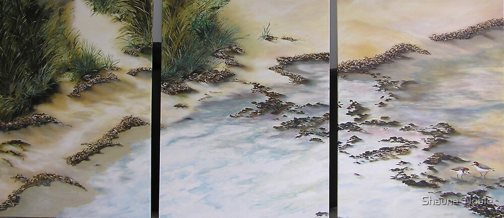 Lifes A Beach for Red Capped Plovers at Wallaroo SOLD by Shauna  Noble