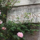 Roman Roses by Kymbo