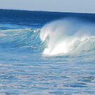 Aqua Surf by Bev Woodman