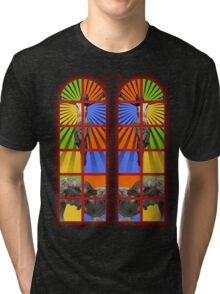 Pained Glass Tri-blend T-Shirt