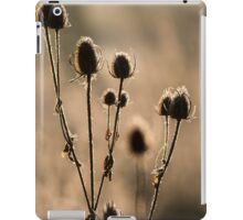 Backlit Teasels iPad Case/Skin