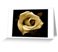 Rose by any other name... in sepia Greeting Card