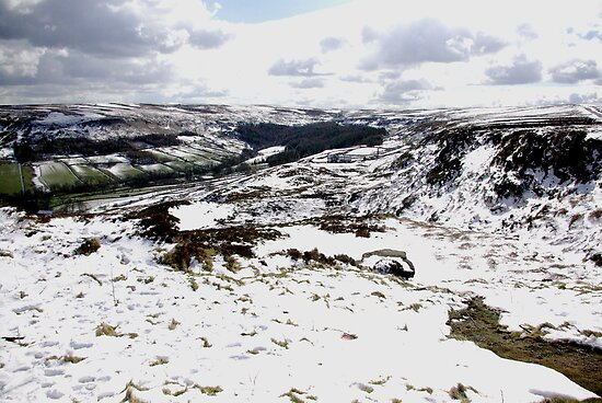 Farndale in Winter by Trevor Kersley