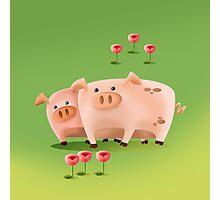 THE PIGS - FARM COLLECTION Photographic Print