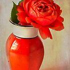 Rose  in Chinese Vase by inkedsandra
