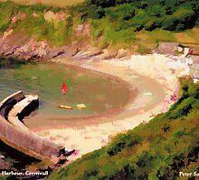 Polkerris Harbour, Cornwall by Peter Sandilands