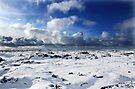 Reykjanes by Roddy Atkinson