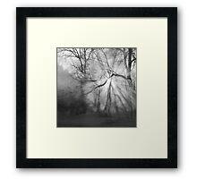 Misty, moiety morning - photography Framed Print