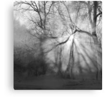 Misty, moiesty morning - photography Canvas Print