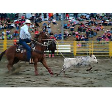 Calf Roping Photographic Print
