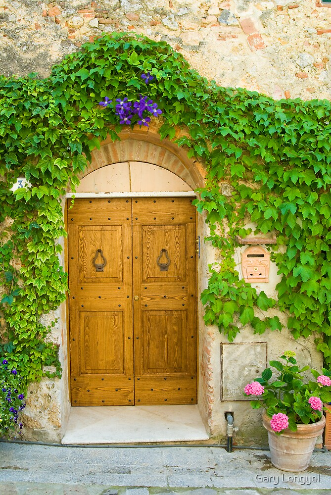 Tuscan Door by Gary Lengyel