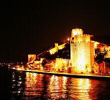 The Castle on the Bosporus by Gideon van Zyl