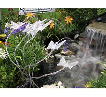 Sprinkle Lights as Pond Spitters  Photographic Print