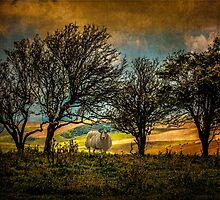 Up On The Sussex Downs by Chris Lord