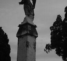 Dark Angel Looks Over.. by William Hardman