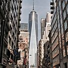 Freedom Tower by Lawrence Henderson