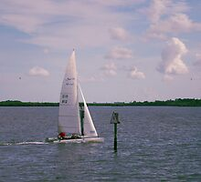 Sailing by MMerritt
