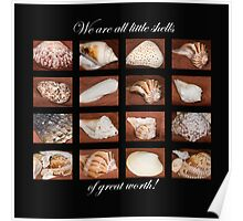 Little Shells of Great Worth . . . Poster