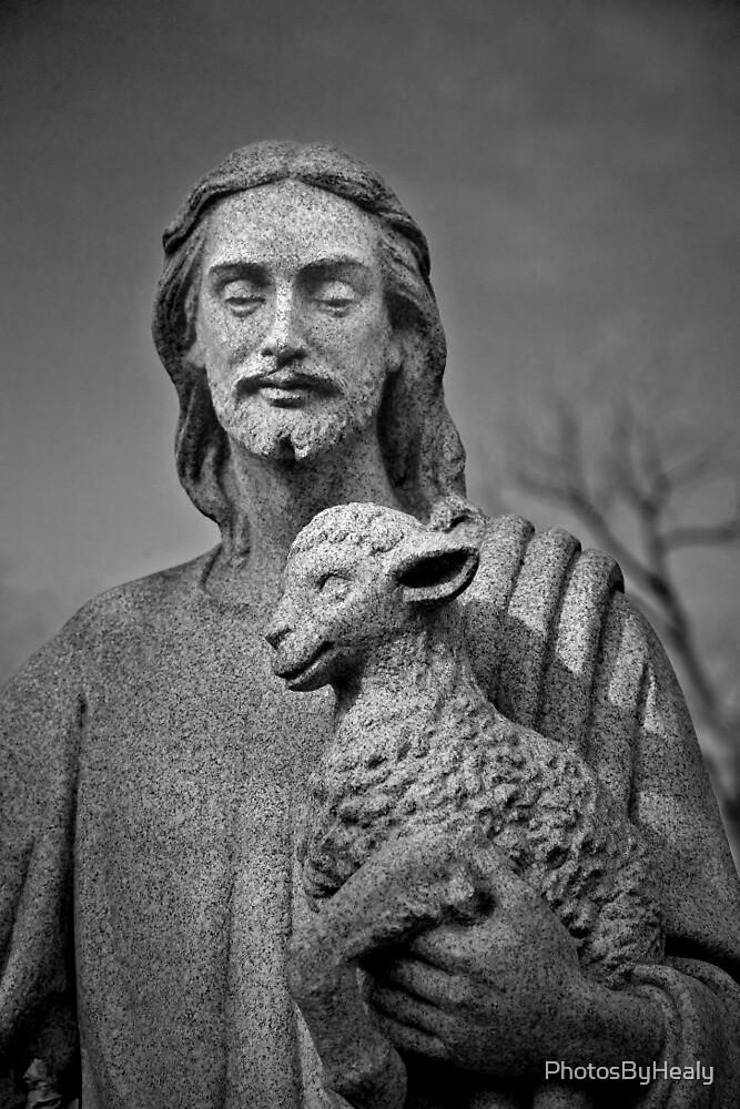 The Shepherd by PhotosByHealy