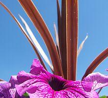Pwetty Purple Flower by Katie  Marie
