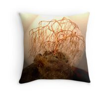 Weeping Birch  Bonsai Throw Pillow