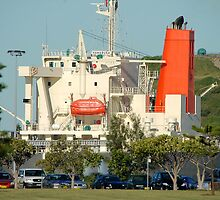 Newcastle Harbour - Hanabusa Coal Ship by Phil Woodman
