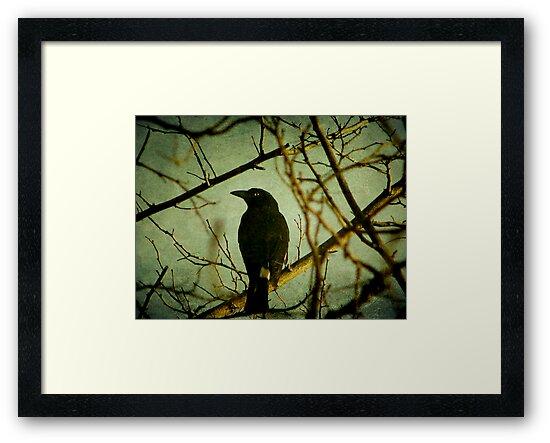 The Watcher by Kitsmumma