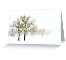 Spring Snowstorm Greeting Card