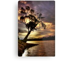 River Redgum Sunset Metal Print