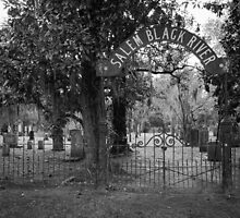 Salem Black River Cemetery by AlixCollins