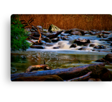 """""""Along the Cumberland River"""" Canvas Print"""