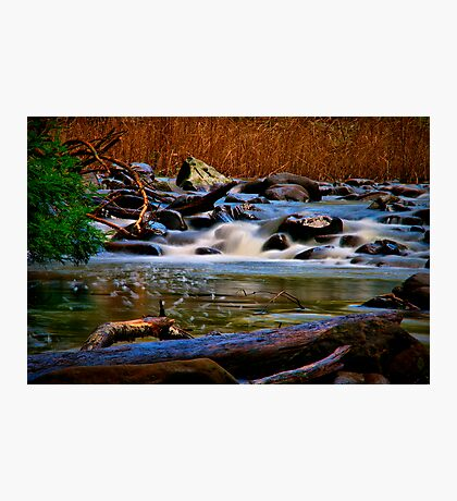"""Along the Cumberland River"" Photographic Print"