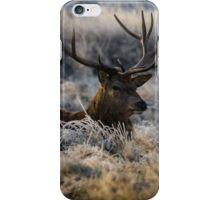 Stag in frozen grass iPhone Case/Skin