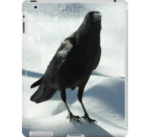 Crow on Snow iPad Case/Skin