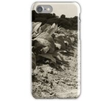 Tobacco Row iPhone Case/Skin
