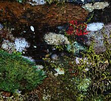 Patchwork. by Roslyn Slater