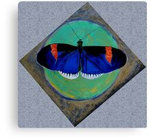 Spiral Butterfly V Canvas Print