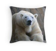 Koda Polar Bear - Sleepy November Throw Pillow