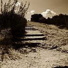 Daudet's Steps by ragman