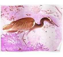 Stalking Heron Poster
