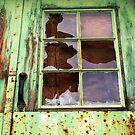 Rooster in the Window by wwyz