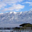 Winter Morning in Farr West, Utah by Jan  Tribe