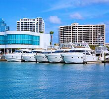 Yachts At The Dock by dave1276