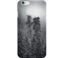 Two Pines, Snowfall iPhone Case/Skin
