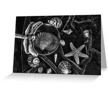 Sea Life Still Life Greeting Card